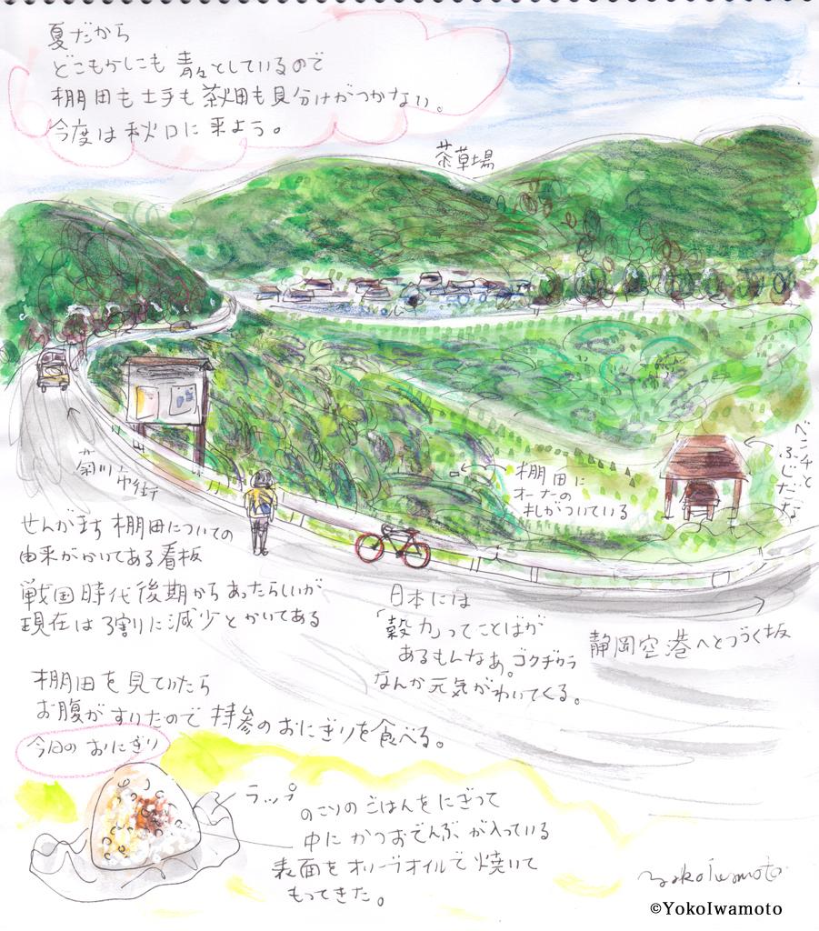 菊川市・せんがまちの棚田風景
